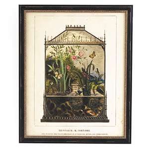 Vintage Vivarium Wall Art