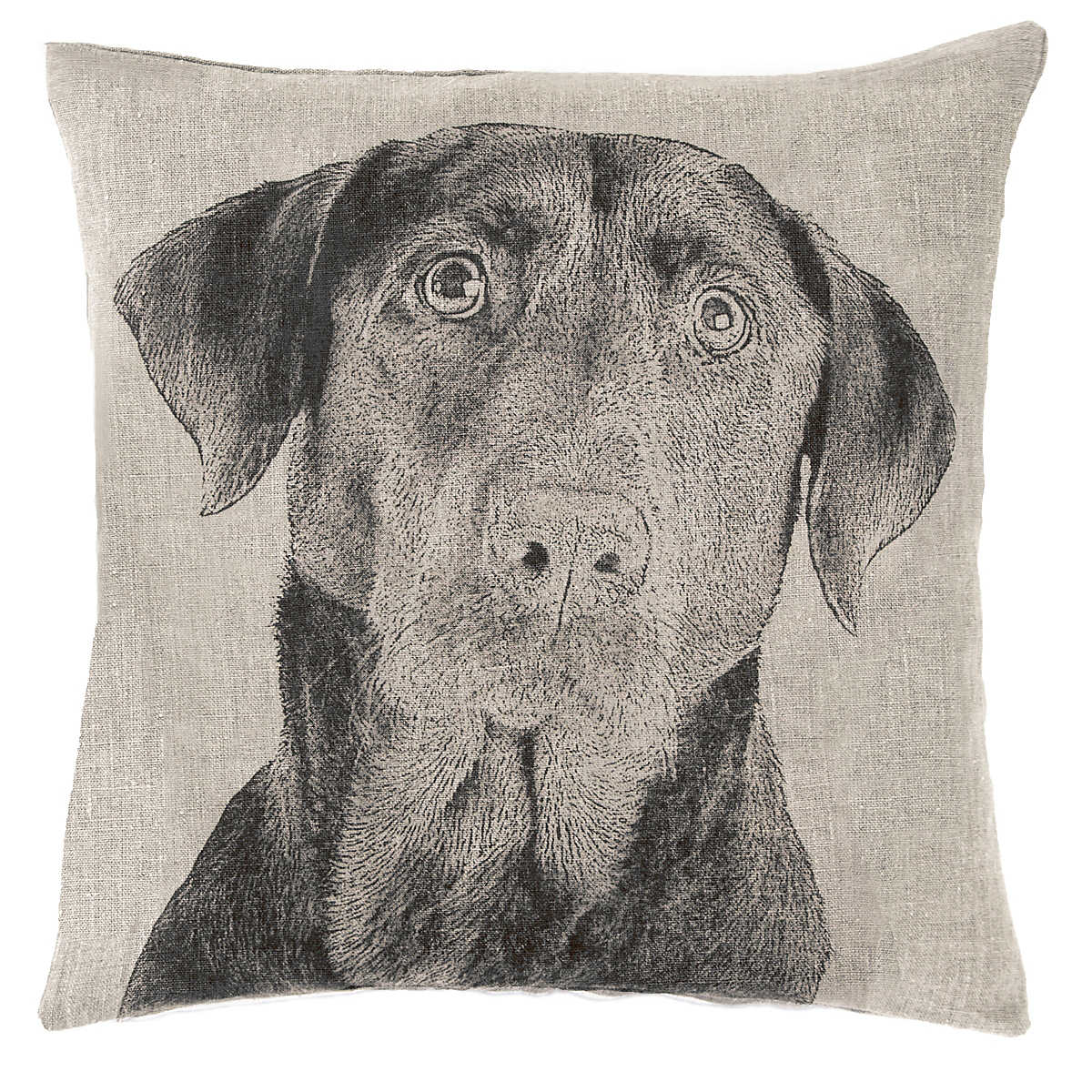 Black Lab Natural Decorative Pillow Fresh American