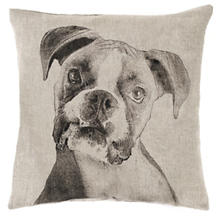 Boxer Natural Decorative Pillow