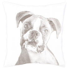 Boxer White Decorative Pillow