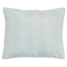 Gloss Velvet Robin's Egg Blue Decorative Pillow