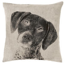Pointer Natural Decorative Pillow