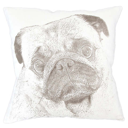 Pug White Decorative Pillow