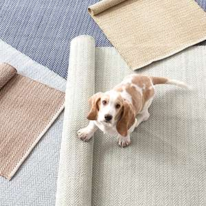 Rugs By Size