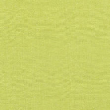 Stone Washed Linen Green Swatch