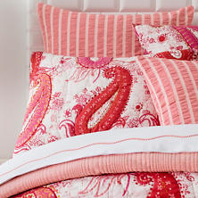 Vista Paisley Quilted Sham