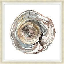 Wood Grain Rings 2 Art