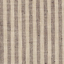 Adams Ticking Brown Indoor/Outdoor Fabric