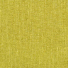 Canvasuede Citrus Ellis Slipcover