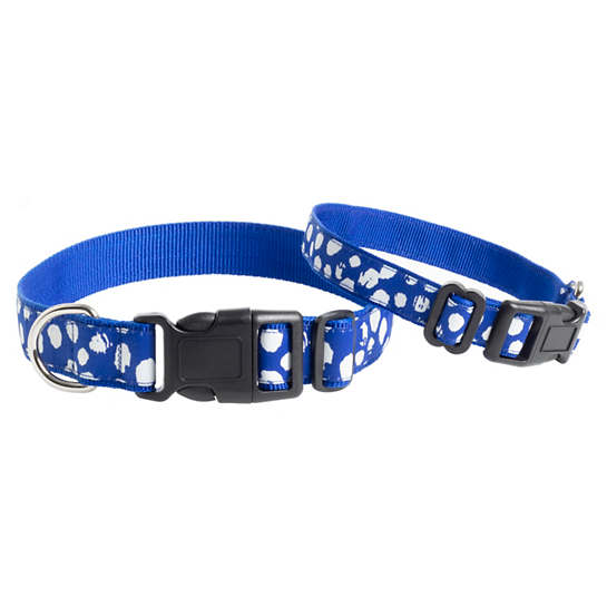 Dalmatian Blue/White Collar