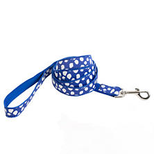 Dalmatian Blue/White Leash