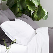 Essential Percale Grey Sham