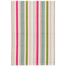 Fruit Stripe Indoor/Outdoor Rug
