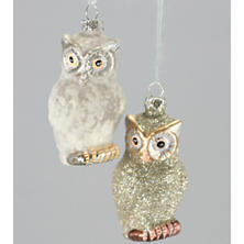 Glitter Owl Ornament/Set Of 2