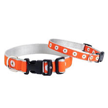 Orange Daisy Collar