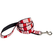 Birmingham Stripe Leash