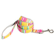 Happy Yellow Stripe Leash