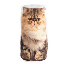 Persian Cat Doorstop