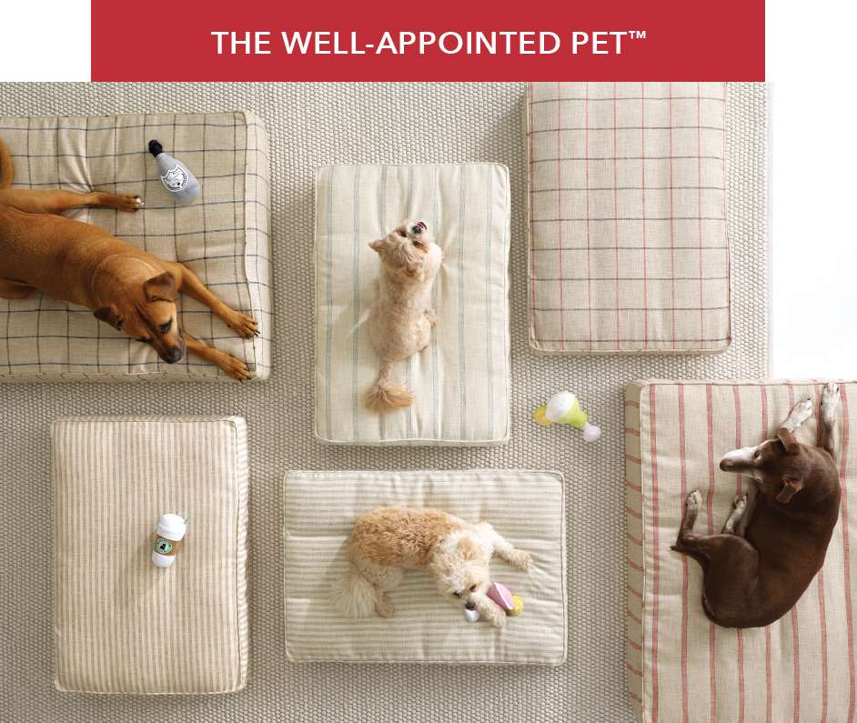 The Well-Appointed Pet 2019 Collection