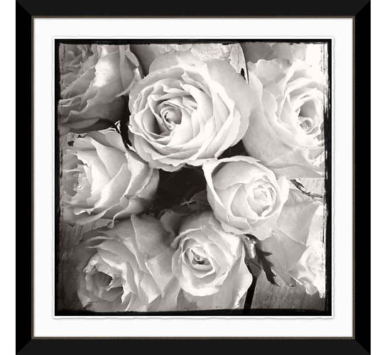 Rose Blanc 2 Wall Art