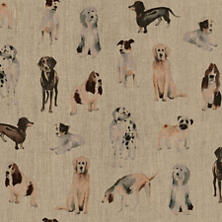 Woof Upholstery Swatch