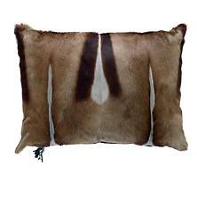 Springbok Grey Pillow