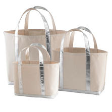 Glam Canvas Natural/Silver Tote Bag