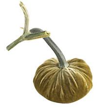 Velvet Celery Pumpkin