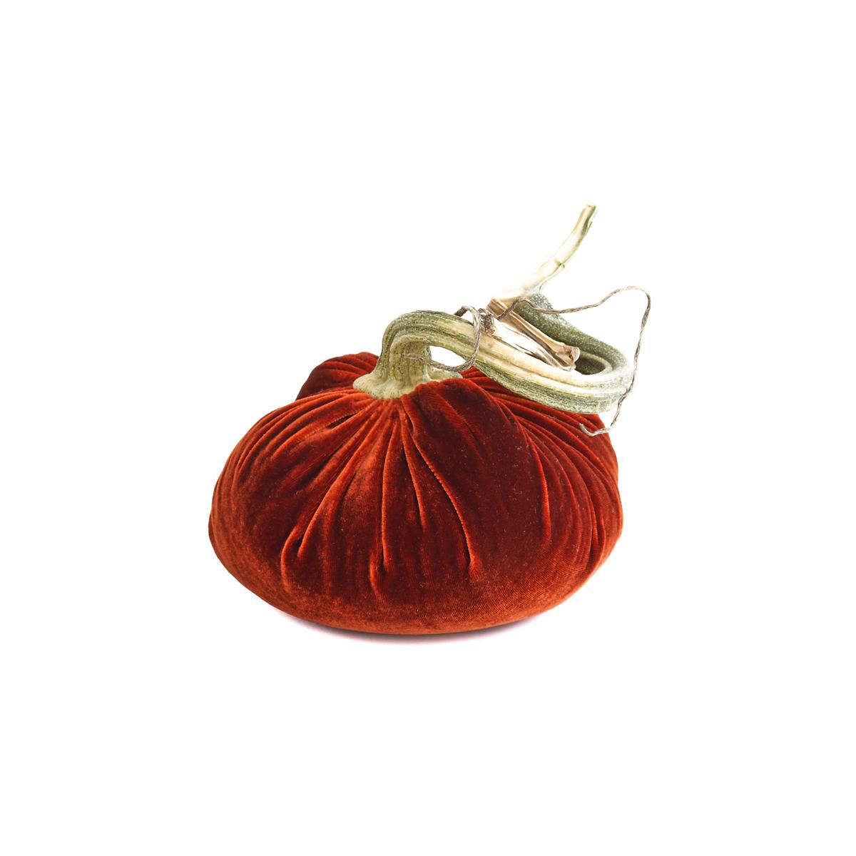 Velvet Fire Pumpkin