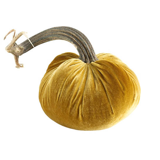Velvet Gold Pumpkin