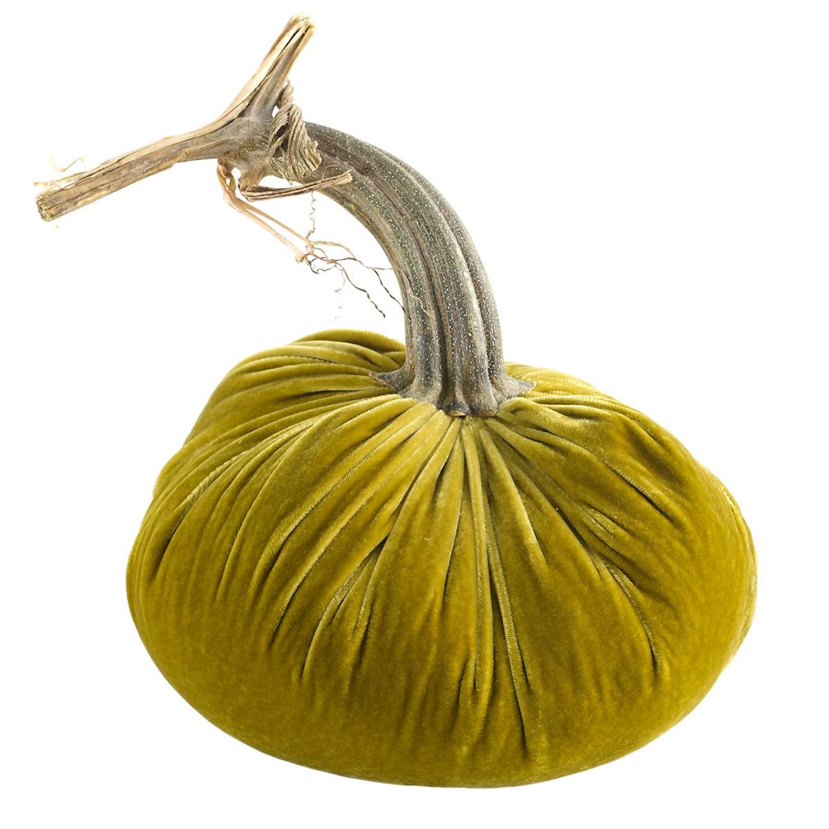 Velvet Leaf Pumpkin