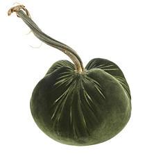 Velvet Moss Pumpkin