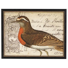 Vintage Bird 2 Wall Art
