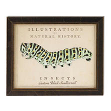 Vintage Caterpillar Wall Art