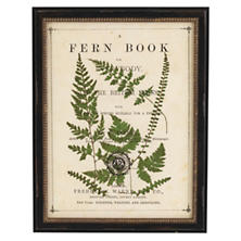 Vintage Fern Collage 4 Wall Art