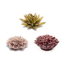 Warm Tone Corals/Set Of 3