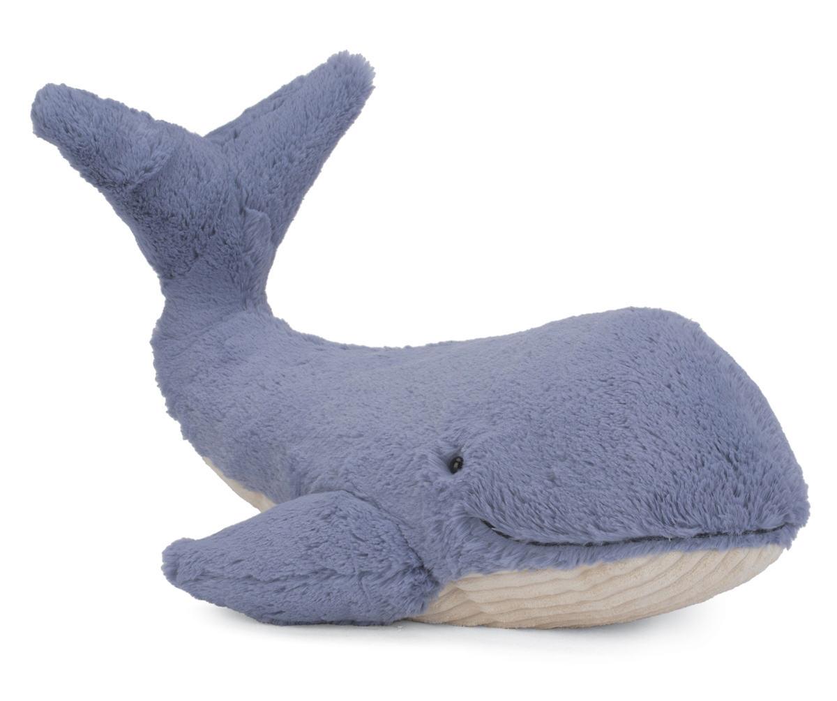 Wilbur Whale